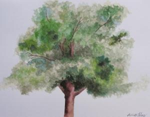 annfoleytree