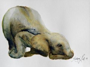 drunken elephant